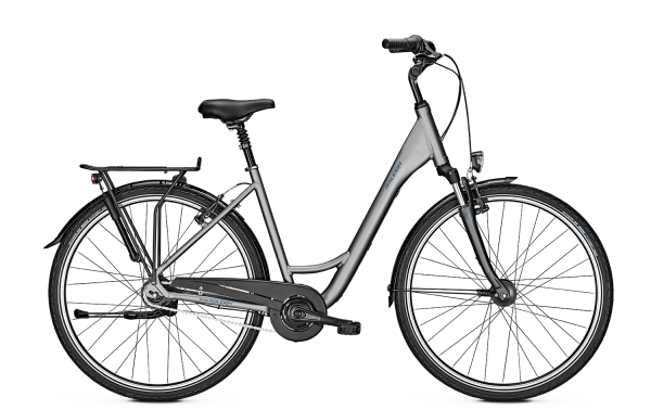 Raleigh CHESTER 8 28WA S45 C GRY